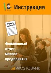 Фінансовий звіт малого підприємства